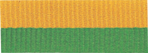 "7/8"" Green/Gold Neck Ribbon with Snap Clip"