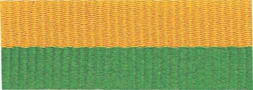 """7/8"""" Green/Gold Neck Ribbon with Snap Clip"""