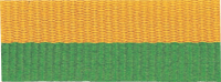 "1 1/2"" Green/Gold Neck Ribbon with Snap Clip"