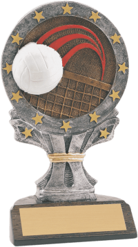 "6 1/4"" Volleyball All Star Resin"
