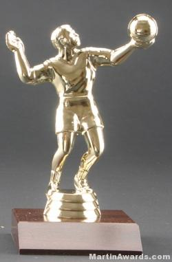 Male Volleyball Trophy 1
