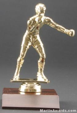 Male Boxer Trophy 1
