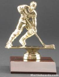 Male Action Hockey Trophy