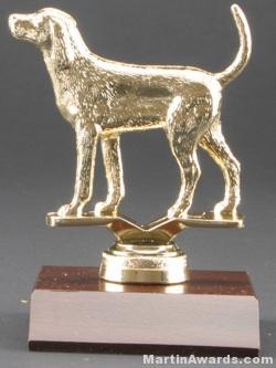 Coon Hound Trophy 1