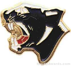 7/8″ Enameled Panther Mascot Pin 1