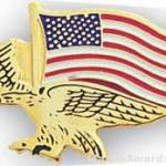 7/8″ Etched Soft Enamel Eagle Flag Chenille Letter Pin 1