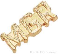 7/8″ Manger Chenille Letter Insert Pins 1