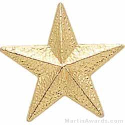 7/8″ Star Chenille Letter Insert Pins 1