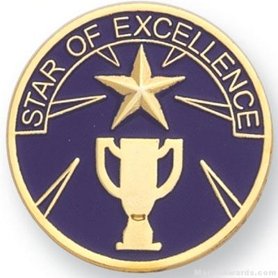 1″ Star Of Excellence Lapel Pin 1